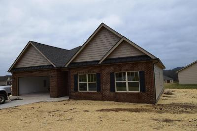 Sevierville Single Family Home For Sale: 2184 Frewin Court