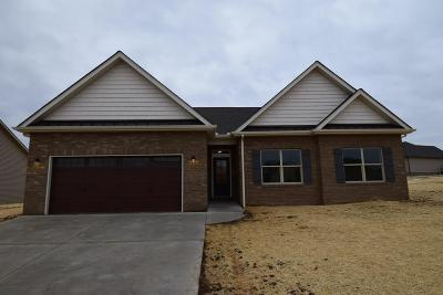 Sevierville Single Family Home For Sale: 1227 Beaumont Ave