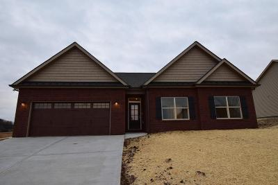 Sevierville Single Family Home For Sale: 1219 Beaumont Ave