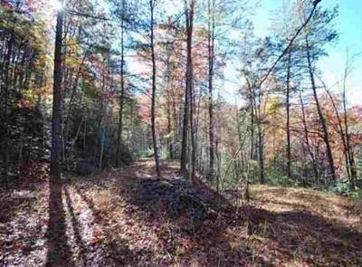Gatlinburg Residential Lots & Land For Sale: Lot 49 Jefferson Rd
