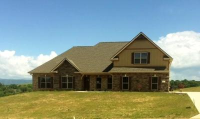 Friendsville Single Family Home For Sale: 1443 Sally View Drive