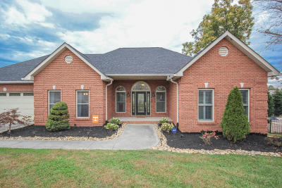 Maryville Single Family Home For Sale: 424 Amberland Lane