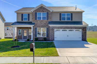 Maryville Single Family Home For Sale: 2324 Pintail St