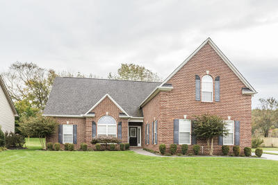 Knoxville Single Family Home For Sale: 1524 Paxton Drive