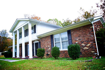 Oliver Springs Single Family Home For Sale: 205 Oak Tree Drive