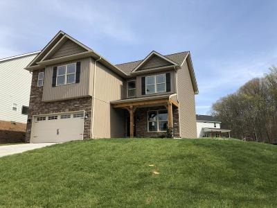 Knoxville Single Family Home For Sale: 9416 Island Creek Lane