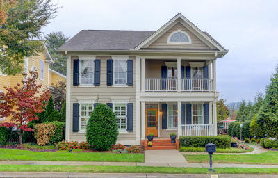 Knoxville Single Family Home For Sale: 320 Park Place Blvd