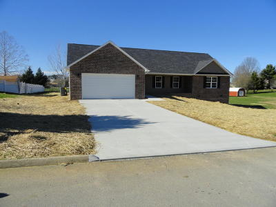 Sevierville Single Family Home For Sale: 641 Bryce View Lane