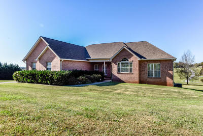Maryville Single Family Home For Sale: 3302 Colby Cove Drive