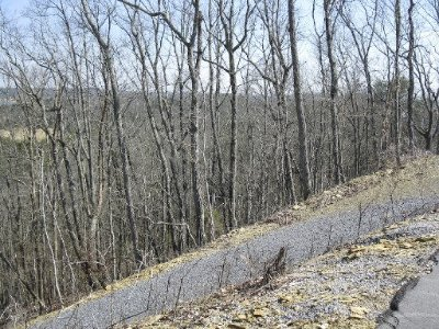 Jefferson County Residential Lots & Land For Sale: Monte Vista