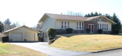 Knoxville Single Family Home For Sale: 1117 Roderick Rd