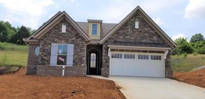 Knoxville Single Family Home For Sale: Dunlin Lane