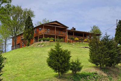 Sevierville Single Family Home For Sale: 1515 Bluebird Cove Lane