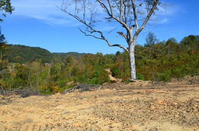 Rogersville Residential Lots & Land For Sale: 217 Ac Pressmens Home Rd
