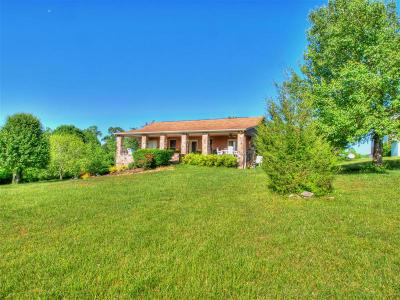 Single Family Home For Sale: 171 Hatt Lane
