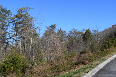Claiborne County Residential Lots & Land For Sale: 728 Bluegreen Way