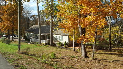 Strawberry Plains Single Family Home For Sale: 103 Laura Boling Loop Rd