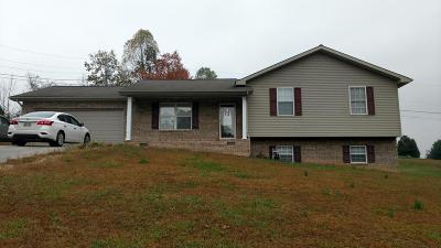Tazewell Single Family Home For Sale: 280 Baldwin Hill Rd