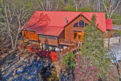 Sevierville Single Family Home For Sale: 2339 Maple Leaf Way