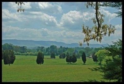 Maryville Residential Lots & Land For Sale: 2732 Raylee Drive