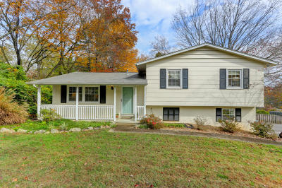 Knoxville Single Family Home For Sale: 1304 Willmann Lane