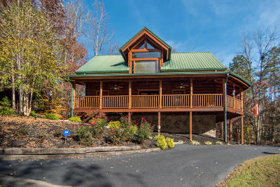 Sevierville Single Family Home For Sale: 2959 Raven Fork Circle