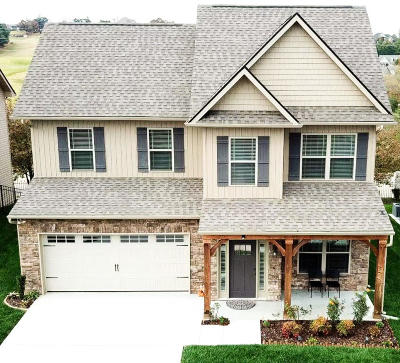Knoxville Single Family Home For Sale: 8929 Affinity Way
