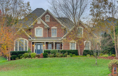 Knoxville Single Family Home For Sale: 9141 Hailes Abbey Lane
