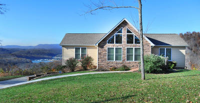 Union County Single Family Home For Sale: 265 Pinnacle Pointe Way