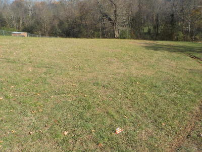 Blaine Residential Lots & Land For Sale: Ritz View Drive