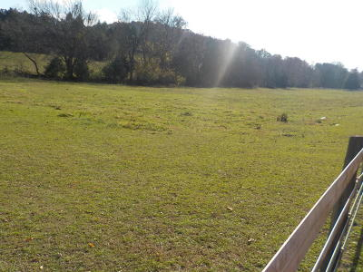 Blaine Residential Lots & Land For Sale: Old Rutledge Pike