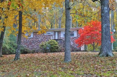 Knoxville Single Family Home For Sale: 4304 Brown Gap Rd