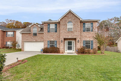 Knoxville Single Family Home For Sale: 1518 Pebble Shore Lane