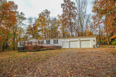 Greenback Single Family Home For Sale: 1040 Kirk Rd