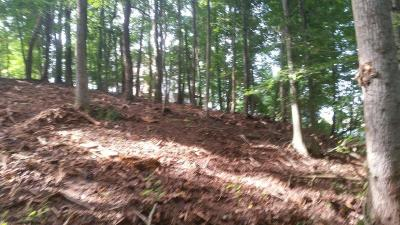 Meigs County, Rhea County, Roane County Residential Lots & Land For Sale: Cherokee