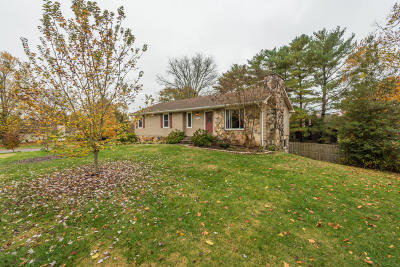 Knoxville Single Family Home For Sale: 2032 Grenada Blvd