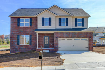 Maryville Single Family Home For Sale: 2308 Pintail St