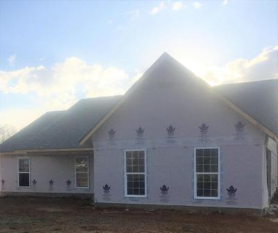 Maryville Single Family Home For Sale: 810 N Springview Rd