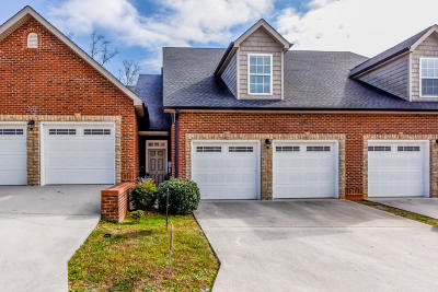 Blount County, Loudon County, Monroe County Single Family Home For Sale: 543 Jacksonian Way #543