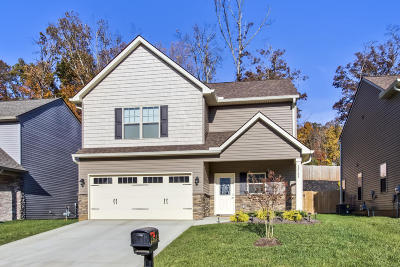 Knoxville Single Family Home For Sale: 12133 Woodhollow Lane