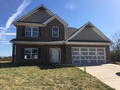 Maryville Single Family Home For Sale: 1313 Mary Katherine Drive