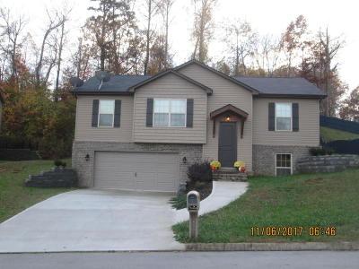 Powell Single Family Home For Sale: 7819 Elkton Lane