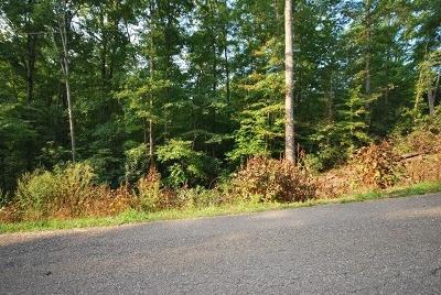 Gatlinburg Residential Lots & Land For Sale: Lot 90 Pinnacle Vista Rd