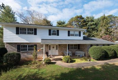 Knoxville Single Family Home For Sale: 1105 Remington Rd