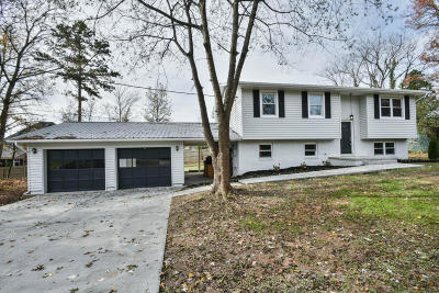 Knoxville Single Family Home For Sale: 1023 Hampson Lane
