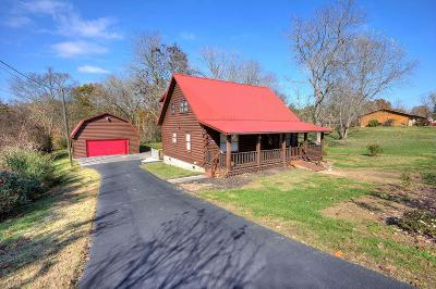 Sevierville Single Family Home For Sale: 509 Mount Drive