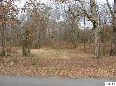 Sevierville Residential Lots & Land For Sale: Lot 14 Flatwood Road