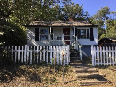 Knoxville Single Family Home For Sale: 917 W Emerald Ave