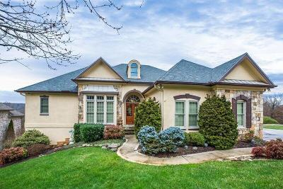 Knoxville Single Family Home For Sale: 9036 Legends Lake Lane