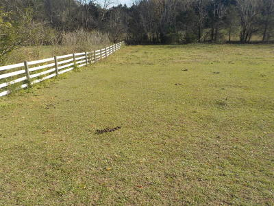 Blaine Residential Lots & Land For Sale: Newman Lane-Old Rutledge Pike